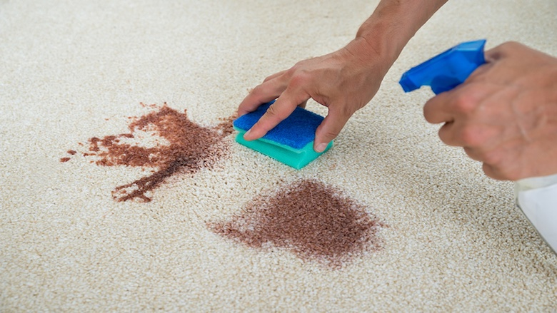 Wie Sie Blutflecken aus dem Teppichboden entfernen
